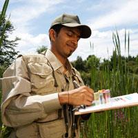 Environmental Analyst